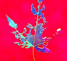 Somebody had Leaf for Lunch – Red by Mike Solomonson