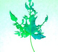 Somebody had Leaf for Lunch – Green Two by Mike Solomonson