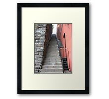 Exorcist Steps Framed Print
