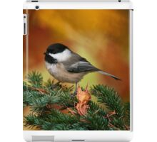 Black Capped Chickadee iPad Case/Skin