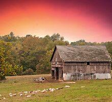 Best little goat Farm by Randy & Kay Branham
