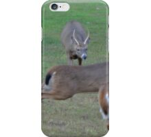 More action in the yard iPhone Case/Skin