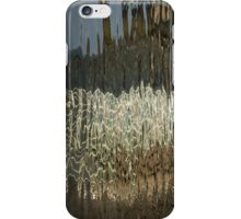 Silk, Moire and Satin Abstracts iPhone Case/Skin