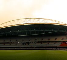 Melbourne Telstra Dome by Marnie Hibbert