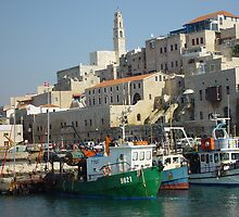 Jaffa fishing port by Moshe Cohen