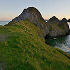 Three Cliffs Bay by Paula J James