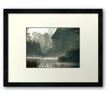 Ghost Trees Framed Print