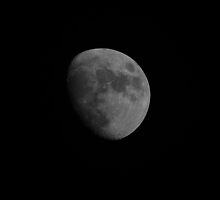 The Moon Backyard Photography Has Changed by Happystiltskin