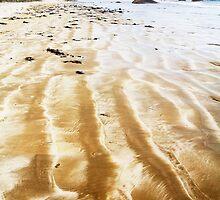Duck For Cover: Granites Beach, Kingston S.E., South Australia by Dave Underwood