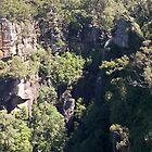 Twin Falls Morton National Park by Laura Moore