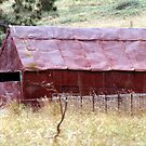 Home Made & Rusty Red by Larry149