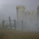 Camelot Mists by Sarah Moore