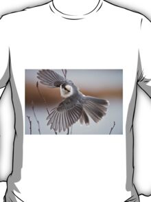 Gray Jay Take Off T-Shirt