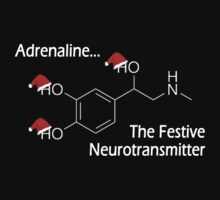 Adrenaline - The Festive Neurotransmitter by Clayton Suares