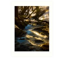 The Flowing sping melt Art Print