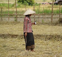 Asian Farmer 1 by Rick Olson