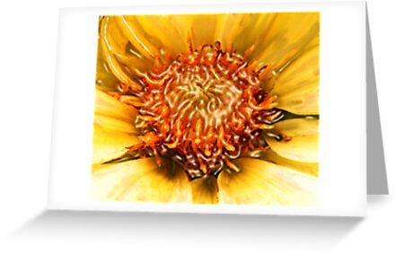 SUN DAHLIA & RIVER ~ ACRYLIC ON CANVAS by LacewingDesign