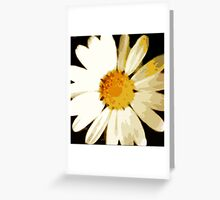 WHITE DAISY , FREEFORM SIMPLISTIC ~OIL ON CANVAS Greeting Card