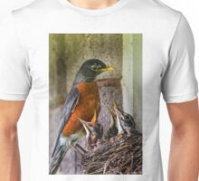 American Robin And Nest T-Shirt