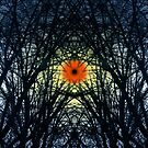 SymmetryInExtremis&Rebirthing by RosaCobos