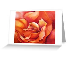 PEACH ROSE ~ OIL ON CANVAS Greeting Card