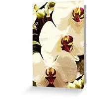 SUMMER WHITE ORCHID ~ OIL ON CANVAS Greeting Card