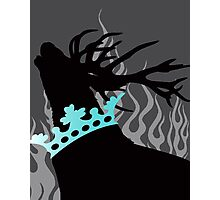 Game of Thrones Baratheon Silver & Aqua Crowned Stag Photographic Print