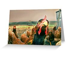 chicken attitude Greeting Card