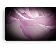 Lavender Rose - Macro  Canvas Print