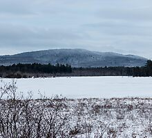 Baxter State Park Maine  by TKPhotos