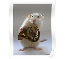 French horn. Poster