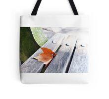 Autumn Leaf on Central Park Bench Tote Bag