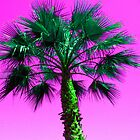 Pink Palm Tree by johnsonKa21