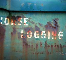 Horse Logging by Lacey Kirsch