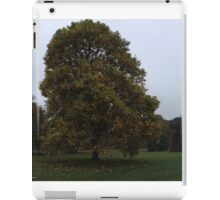 Ireland - Blarney Panaramic iPad Case/Skin
