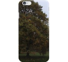 Ireland - Blarney Panaramic iPhone Case/Skin