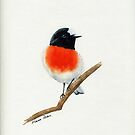 Flame Robin by Faye Doherty