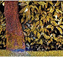 Leaves #1 by Mark Ross
