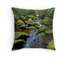 Mossy Green Rocks Throw Pillow