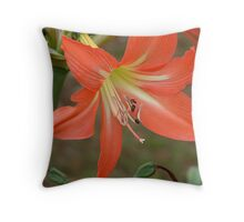 keeping creation going Throw Pillow