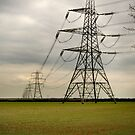 The Electric Fen by Trevor Patterson