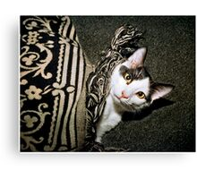 This Is Bingbing! Canvas Print