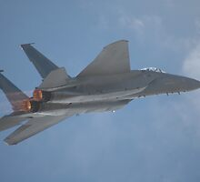 F-15 - Climbing Flypast @ Avalon Airshow 2007 by muz2142