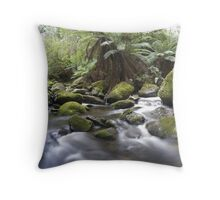 Keppels Falls River Throw Pillow
