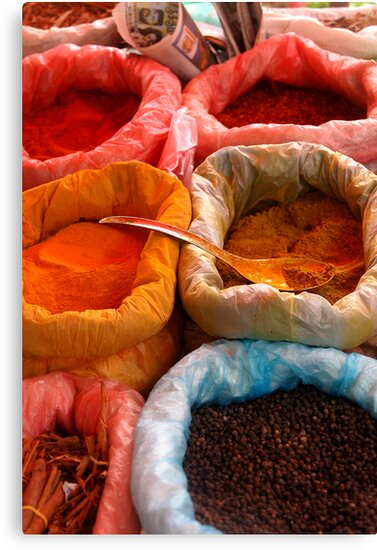 Spices by Kylie Reid