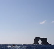 Darwin's Arch by Colt