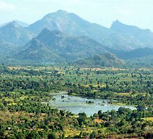 View from Sigiriya by Kylie Reid