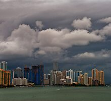 Storm Brewing by Roland Pozo