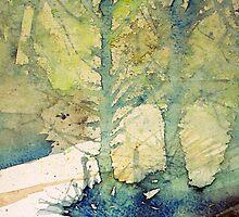fir trees by Claudia Dingle