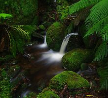 Mount Erica Stream. by Bette Devine